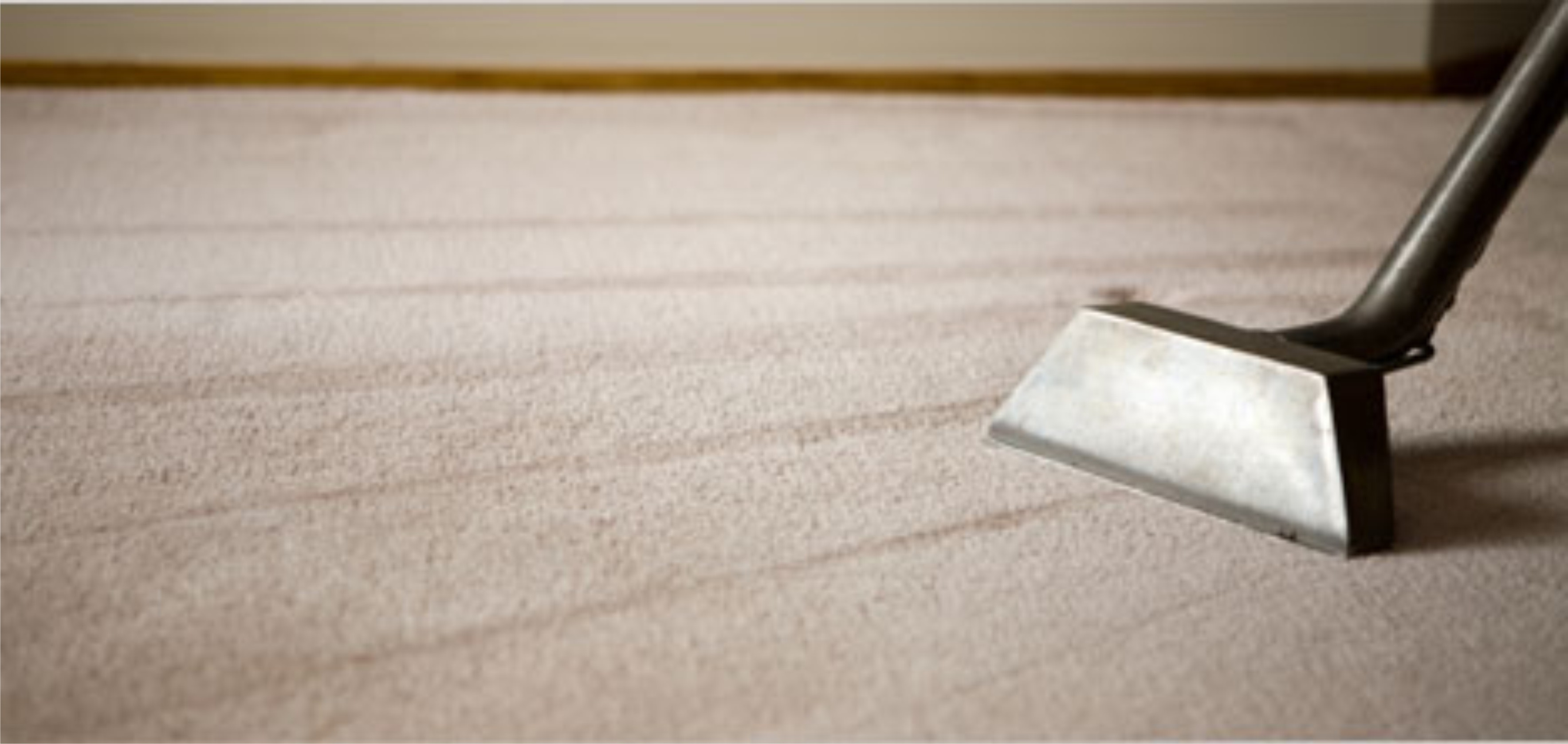 Save Money Buying A Carpet Steam Cleaner Steam Clean