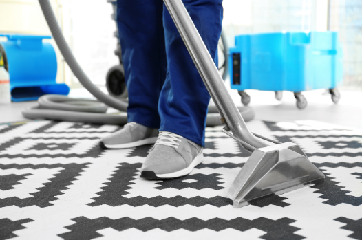 Carpet cleaning and flea treatment Gold Coast