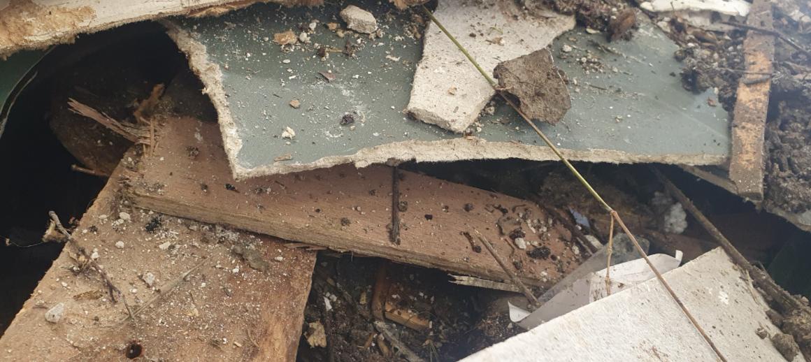 Asbestoses disposal Auckland