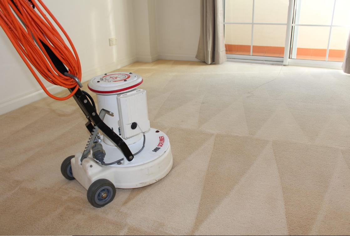 steam carpet cleaner Perth
